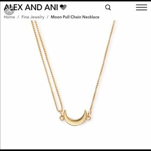 Alex and Ani moon pull chain necklace